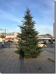 01 Weihnbachtsbaum 23.11.2016 (1)